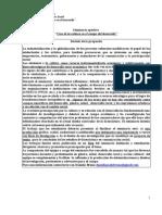 Programa 2010 - Seminario Usos de La Cultura en El Desarrollo