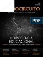 Neurocircuito Demo