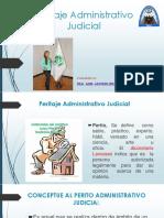 Peritaje Administrativo Judicial