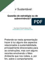 Ser Sustentável - questão de estratégia ou de sobrevivência