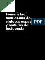 Apuntes Para Una Historia de Debate Feminista