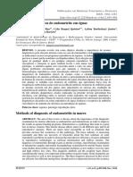 Métodos Diagnósticos de Endometrite Em Éguas