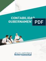 265552422-Ae-Contabilidad-Gubernamental.pdf