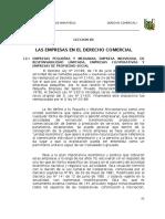 Empresas Pequeñas y Micro Empresas en Derecho Comercial