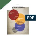 Infografia Etapas Desarrollo Organizacional