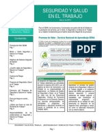 141511269-Induccion-en-Seguridad-y-Salud-en-el-Trabajo.pdf