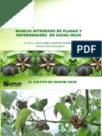 Manejo Integrado de Plagas i Enfermedades Cultivo SACHA INCHI.pdf