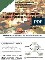 Apresentação Ecologia - Nova Versão