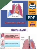 derramepleural-130910184119-phpapp02