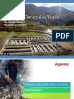 cursoproducciondetrucha-130408235125-phpapp02.pdf