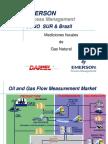 Medicion de Gas Rev 3.0 AGA 5.pdf