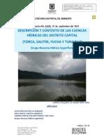 Informe Contexto de Los Rios de Bogotá