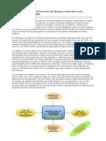 La integración de la Prevención de Riesgos Laborales en la empresa