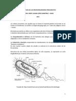 celulas procarioticas.pdf