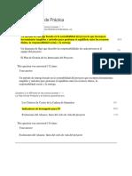 PRACTICA EXAMEN GPM.docx