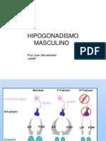 07 hipogonadismoexp
