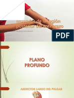 ANTEBRAZO POSTERIOR, TENAR, HIPOTENAR.pptx