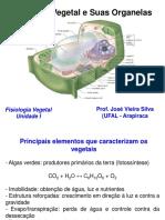 Celula Veg