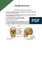 EL SISTEMA ARTICULAR.docx