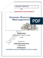 Hrm Project Report Pdf
