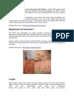 Infeksi Human Papilloma Virus Penyebab Kutil Kelamin