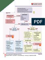 Adult Tachycardia (With Pulse) Algorithm