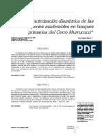 A.M.VILLA.pdf
