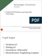 Plant Development_Karakter Sel