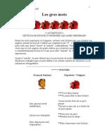 LES GROS MOTS.pdf