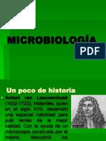 Clasificación de Microorganismos