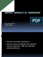 Anemia Normositik Normokrom 015