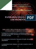 Patologia Celular