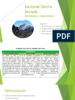 Presentacion Final Sierra Nevada