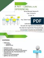 Pvt- Liberacion Diferencial