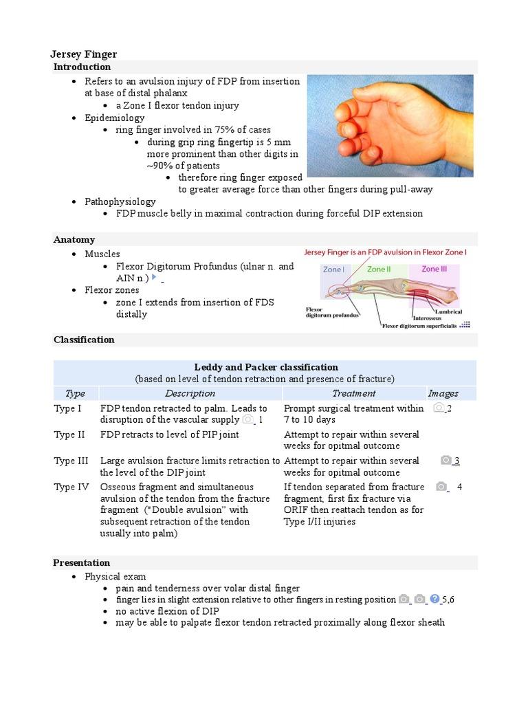Jersey Finger.doc | Finger | Musculoskeletal System