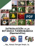 Botanica Fanerogamica