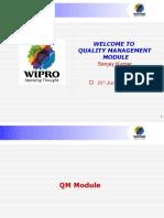 310231690 SAp QM Overview