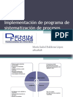 Implementación de Programa de Sistematización de Procesos