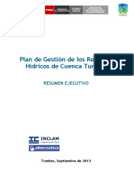 Plan Ejempñlo Tumbesgrhc-resumen Ejecutivo