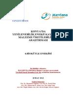 Biokütle - Konya'Da Yenilenebilir Enerji Kaynakları Malzeme Üretebilirlik