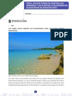 Taller de Ecosisyema y Clases de Ecosistemas