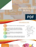 Metabolismo de b12