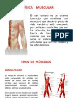 BIOFISICA  MUSCULAR.pptx