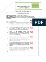 7.- Programa de Auditoria Ambiental