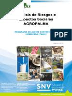 Analis de Riesgos e Impactos Sociales Agropalma