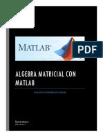 GUIA BASICA de MATLAB Universitario Ariel Mamani Nina