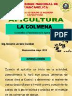3º La Colmena 2013