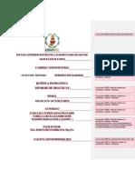 FORMATO DE INFORME.pdf