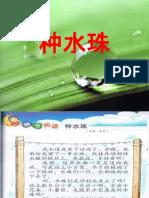 阅读教学 种水珠
