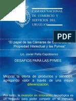Camara Pyme